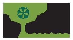 Logo Editura Solomon